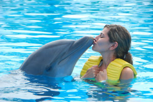 Dolphin Kissing Woman